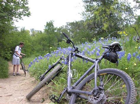 Knob Hills Grapevine Lake Mountain Bike Trail In Flower