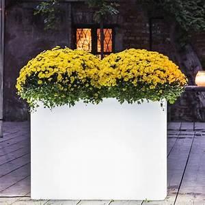 Pflanzkübel Weiß Rattan : vaso beleuchteter pflanzk bel rechteckig wei ebay ~ Indierocktalk.com Haus und Dekorationen