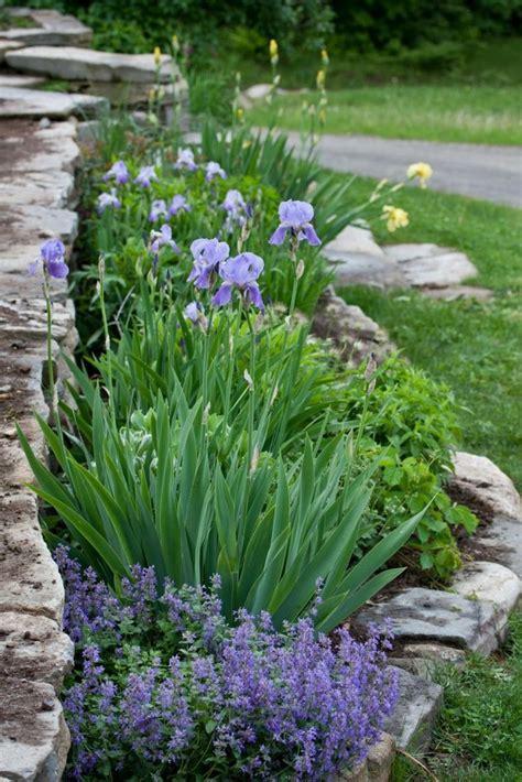 Garten Gestalten Steingarten by Steingarten Anlegen Und Mit Lavendel Dekorieren