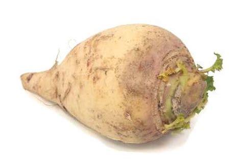 cuisiner les rutabagas légumes et fruits leurs histoires suite les choisir les cuisiner