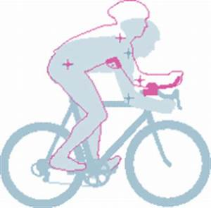 Rennrad Sitzposition Berechnen : sitzpositionen fahrrad trekkingbike mountainbike rennrad ~ Themetempest.com Abrechnung
