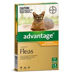advantage flea for cats country vet buy cheap advantage flea treatment for cats
