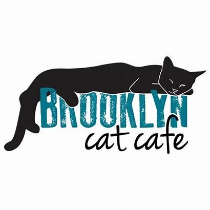 Cat Cafe Brooklyn York Cats