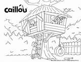 Treehouse Caillou Coloring Colouring Sheet Activities Visit Printable sketch template