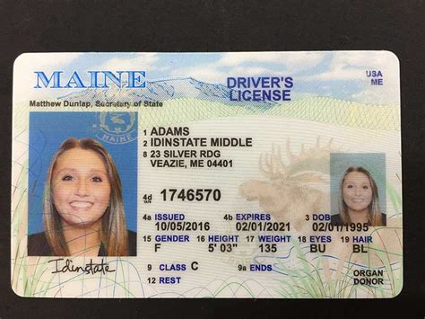 maine fake license usa driver state