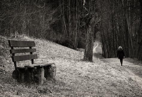 Image D Un Banc by Solitude D Un Banc Einsamkeit Einer Bank Photo Et Image