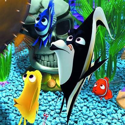 Nemo Finding Fish Underwater Disney Ocean Animation
