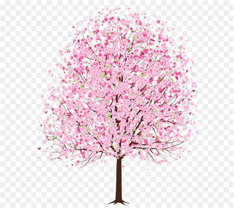 cherry blossom tree clip art pink spring deco tree png