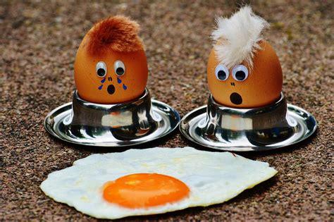 images cute dish meal food breakfast egg yolk