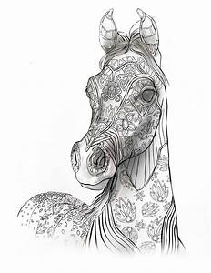Best 25+ Adult coloring book pages ideas on Pinterest
