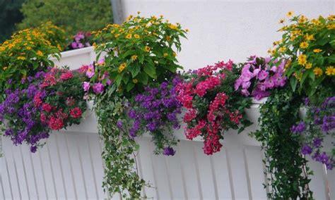 idee terrazzo fiorito balconi e terrazzi fioriti giardini dinamici