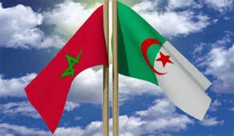 algerie focus france la rivalite entre lalgerie  le