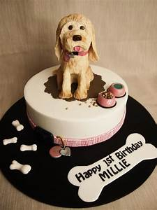 64 best images about dog cakes on pinterest chihuahuas With dog birthday cake houston