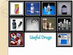 Useful Drugs