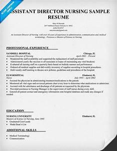 Assistant Director Nursing Resume Template