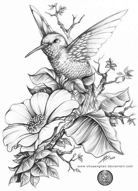 Hummingbird 蜂鸟 done for a book cover A4 size, HB, 3B, 6B | Patterns, stencils, photo transfer