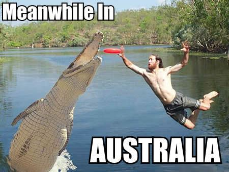 Australian Memes - 27 hilarious australia memes that perfectly describe living down under