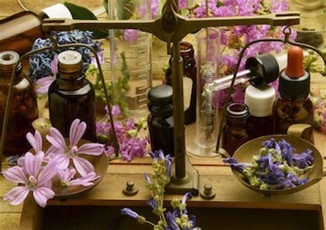 fiori di bach e ansia fiori di bach per l ansia dei bambini cure naturali it