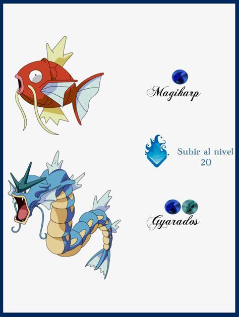 magikarp evoluciones  maxconnery  deviantart