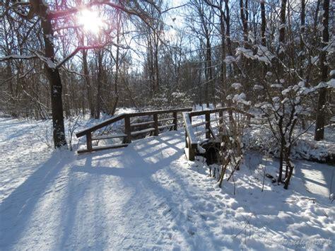 Englischer Garten Winter by Jahreszeiten