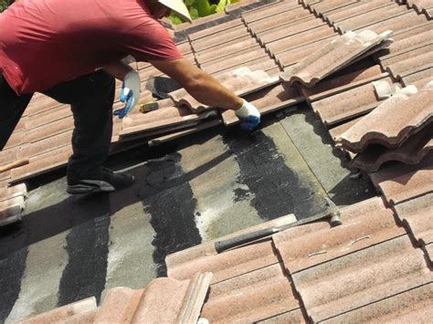 roof repairs  roofs  miami roof leak repair