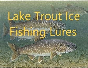 lake trout ice fishing lures trout  biting