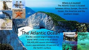 U00263915 World Geography Biomes Infographics Sharyland High