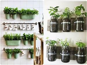 5 razones por las que debes cultivar tu propio huerto for 5 cultivos faciles para empezar un huerto en casa