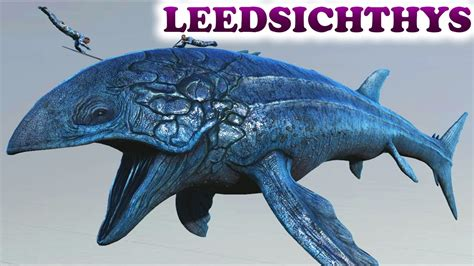 How to protect your boat build and stop the whale by. Leedsichthys Comparison Gallery