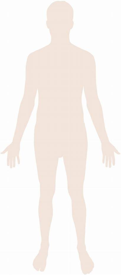 Human Silhouette Svg Commons Transparent Wikimedia Clipart