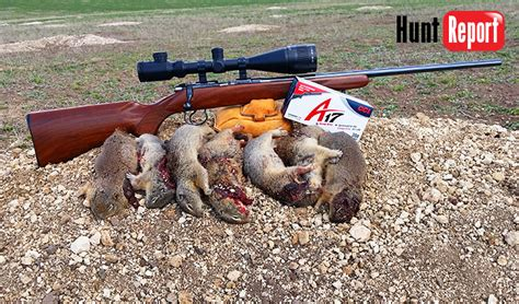 17 best images about american fx 30 caliber airgun field test hunt report