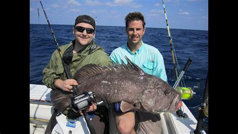 grouper warsaw