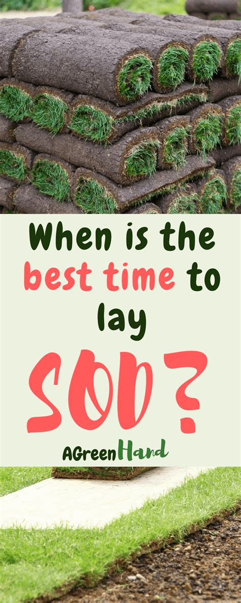 best time to re sod when is the best time to lay sod a green hand