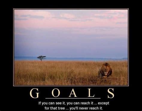 Goals Meme - goals meme guy