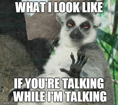 Talking In Memes - stoner lemur meme imgflip