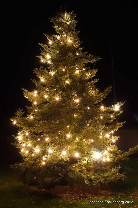 top 28 weihnachtsbaum aufstellen bildergalerie