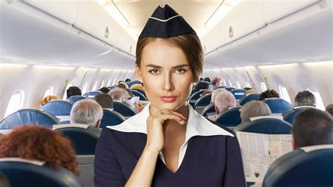 career cabin crew hairstyles for flight attendants hairstyles