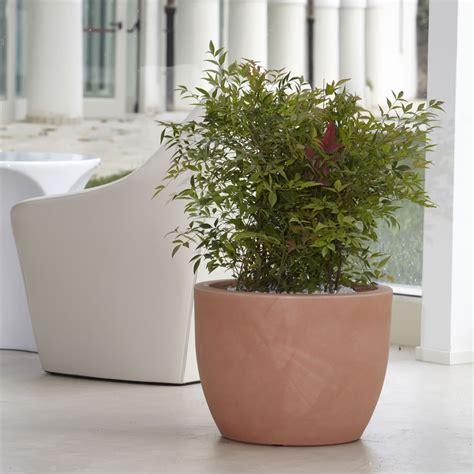 vaso piante vaso per piante da interno ed esterno hera nicoli