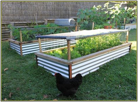 raised bed planters designs 11 best veggie garden beds images on pinterest raised beds backyard ideas and raised gardens