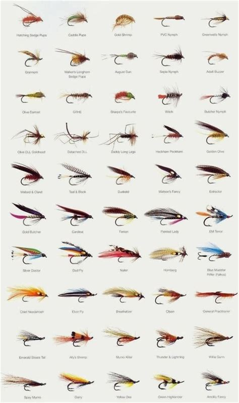 fishing fly lures pliers