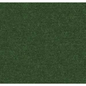 Shop Lighthouse Spring Green Indoor/Outdoor Carpet at
