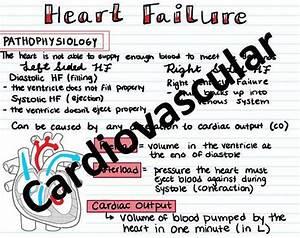 Fundamentals Of Nursing 17 Page Bundle
