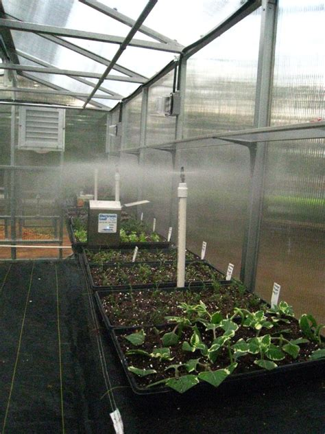 intermittent mist system for plant propagation