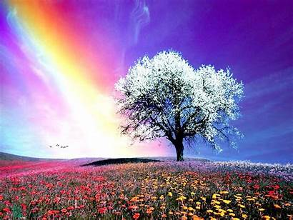 Rainbow Natural Wallpapers Nature
