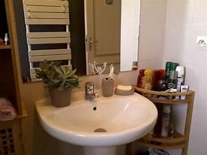 Ma Salle De Bain : ma salle de bain lin gris anthracite photo 4 9 3517508 ~ Dailycaller-alerts.com Idées de Décoration