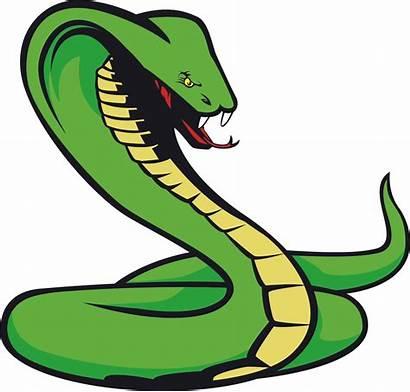 Snake Transparent Cartoon Tattoo Clipart Library Pinclipart
