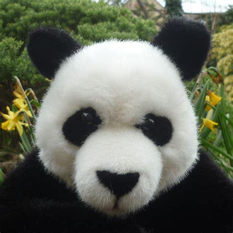 Panda Sitting By Kosen Teddy Bears