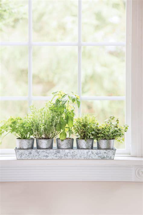 Windowsill Pots - galvanized windowsill herb planters tray gardeners