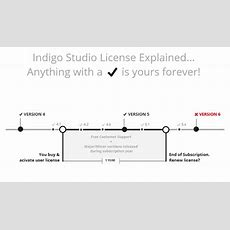 Common Questions About Indigo Studio License & Pricing