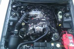 2005 Ford 4 6l Engine Diagram